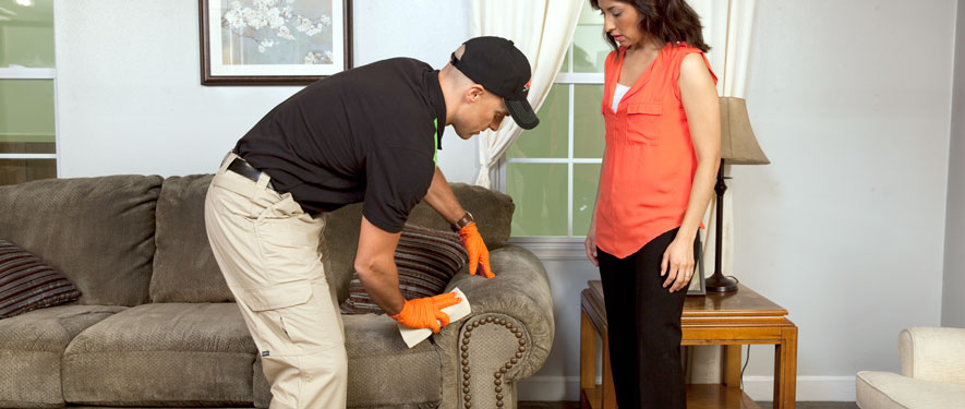 San Diego, CA carpet upholstery cleaning
